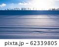 《北海道》冬の美瑛・ストライプ模様の雪原の丘 62339805