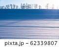《北海道》冬の美瑛・ストライプ模様の雪原の丘 62339807