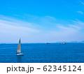 大阪湾とヨット 62345124