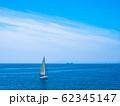 大阪湾とヨット 62345147