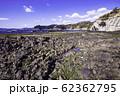 (静岡県)伊豆半島ジオパーク・恵比須島 千畳敷 太古の地層 62362795