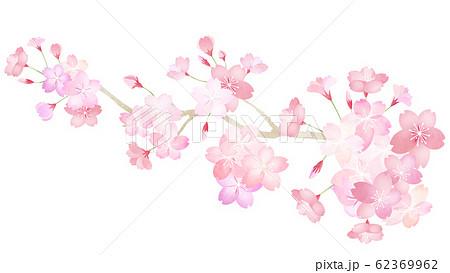 素材-パーツ-桜-枝-春-和-和風-和柄-和紙-日本 62369962