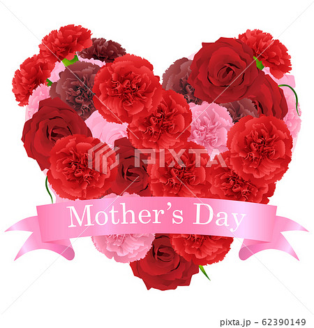 母の日 62390149