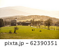 Hilly landscape of Jizera Mountains around Prichovice village. Green meadows with tree alley and small rural church, Czech Republic 62390351