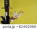 黄色い背景に少し抜いた日本刀と白い花が咲いた梅の枝 62402066