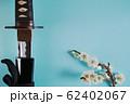 青い背景に少し抜いた日本刀と白い花が咲いた梅の枝 62402067