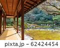 京都・青蓮院 華頂殿から庭園の眺め 62424454