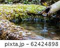 京都・青蓮院 鹿威しと苔 62424898