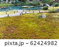 京都・青蓮院 2月の庭園と苔 62424982