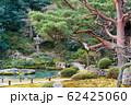 京都・青蓮院 2月の庭園と苔 62425060