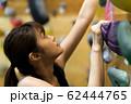 ボルダリング(若い女性、フィットネス、トレーニング 62444765