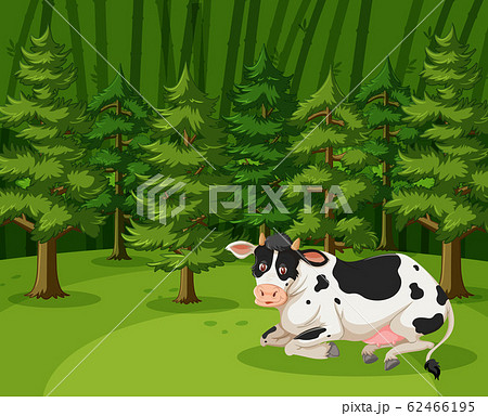 Scene with one cow in the big forest 62466195