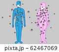 人から人にウイルスの感染が広がったイメージ画像 62467069