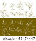 ハーブセット 線画 手描き 62474447