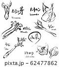 山菜セット モノクロ 手描き 62477862