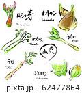 山菜セット カラー 手描き 62477864