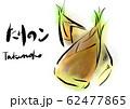 たけのこ 手描き 日本画風 62477865