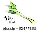 うるい 手描き 日本画風 62477868