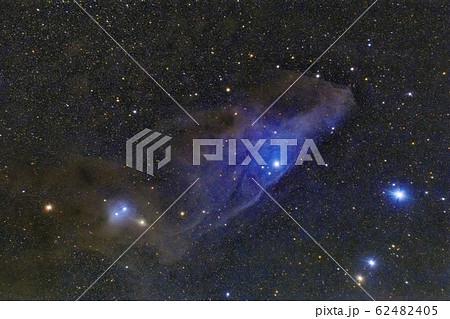 青い馬頭星雲 IC4592 62482405
