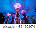 シンガポール ガーデンズ・バイ・ザ・ベイ 62492974