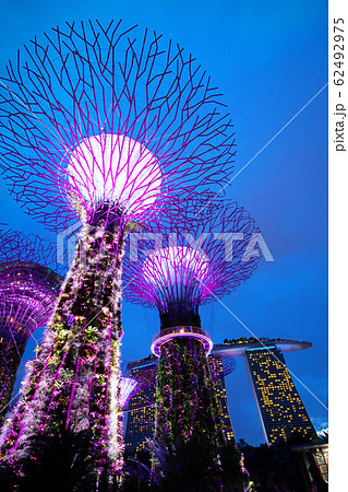 シンガポール ガーデンズ・バイ・ザ・ベイ 62492975