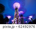 シンガポール ガーデンズ・バイ・ザ・ベイ 62492976