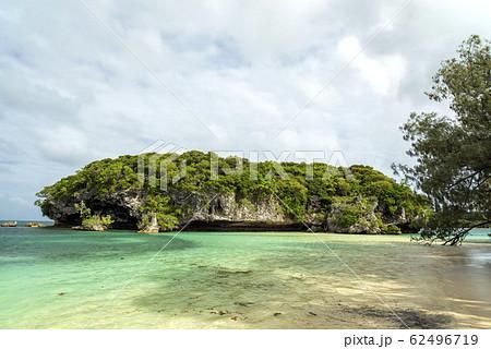 ニューカレドニア ロワイヨテ諸島 イル・デ・パン カヌメラビーチ 62496719
