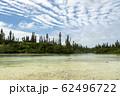 ニューカレドニア ロワイヨテ諸島 イル・デ・パン ナチュラルプール  62496722