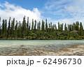 ニューカレドニア ロワイヨテ諸島 イル・デ・パン ナチュラルプール  62496730