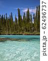 ニューカレドニア ロワイヨテ諸島 イル・デ・パン ナチュラルプール  62496737