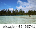 ニューカレドニア ロワイヨテ諸島 イル・デ・パン ナチュラルプール  62496741