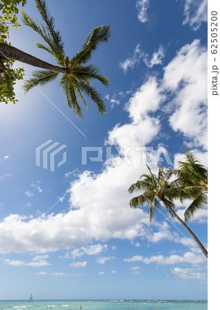 ワイキキビーチ 青空と青い海 perming 写真素材 62505200