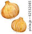 水彩イラスト 食品 食べ物 62532085