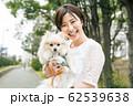 ペット 散歩 犬 62539638