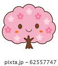 桜の木 62557747
