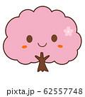 桜の木 62557748