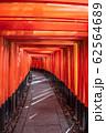 【京都府】伏見稲荷大社 千本鳥居 62564689