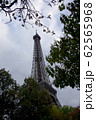 Eiffel Tower in Paris through foliage with a Cloudy Sky 62565968