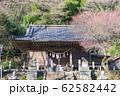 高尾山 登山祈願 氷川神社 62582442