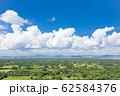 ミャンマー_タワーから見る仏塔群 62584376