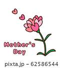 母の日 62586544