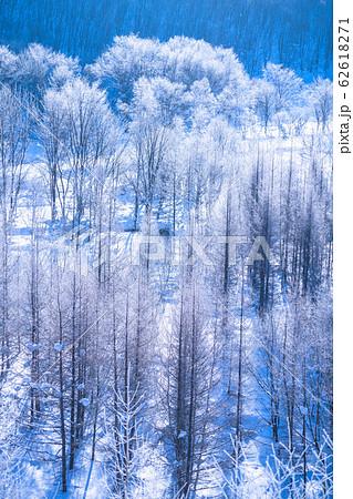 《北海道》霧氷とダイヤモンドダスト・冬の美瑛 62618271