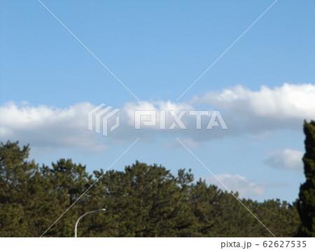 三陽メデアフラワーミュージアムから見た青空と白い雲 62627535