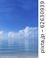 フィリピン パンゴラオのビーチ  62630939
