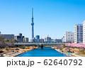 (東京都-都市風景)春の旧中川から見るスカイツリー2 62640792