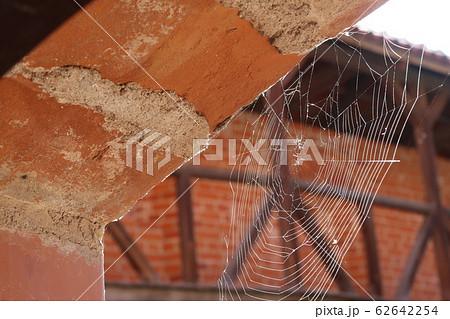 赤レンガと蜘蛛の巣 62642254