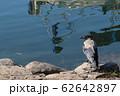 水辺のカラス 62642897