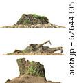 Stump dead tree isolated on white 3d illustration 62644305