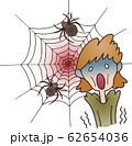 蜘蛛恐怖症 62654036
