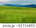 夏の飯豊連峰稜線の草原 62714855